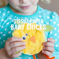 tissue paper baby chick